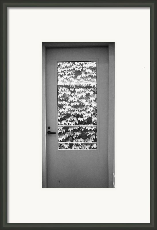 Ivy Door Framed Print By Anna Villarreal Garbis