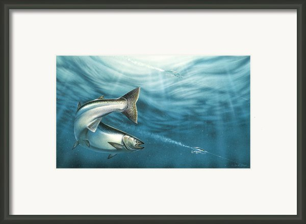 J-pluggin Salmon Framed Print By Jq Licensing