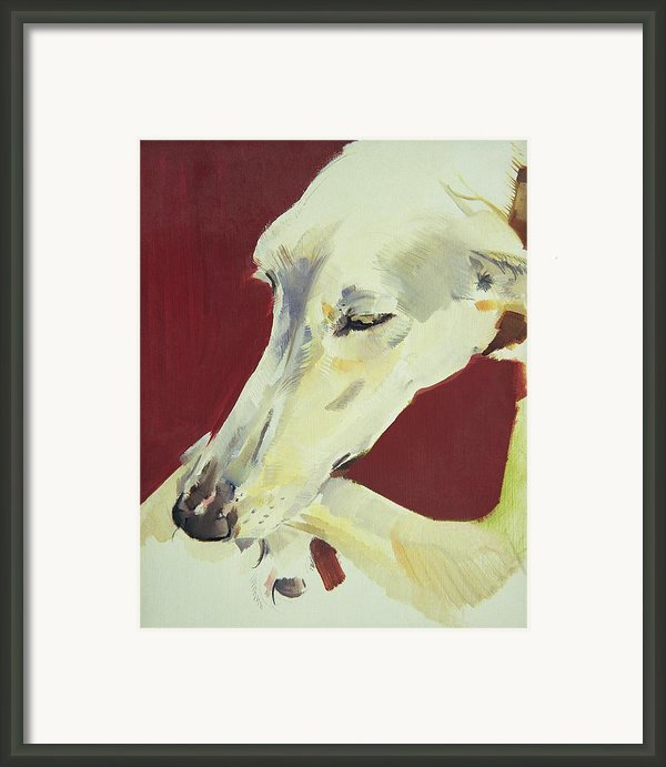 Jack Swan I Framed Print By Sally Muir
