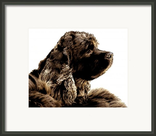 Jack Waits Framed Print By Norman  Andrus