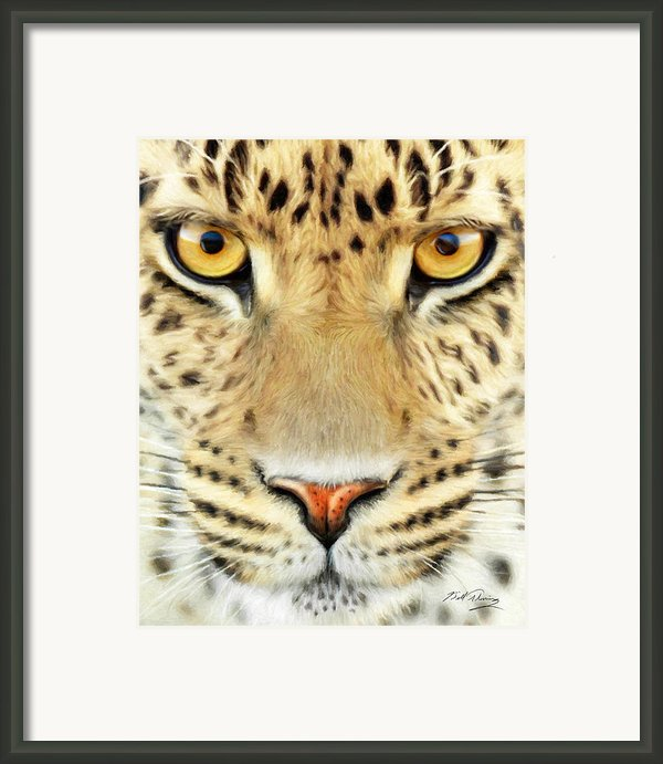 Jaguar Framed Print By Bill Fleming