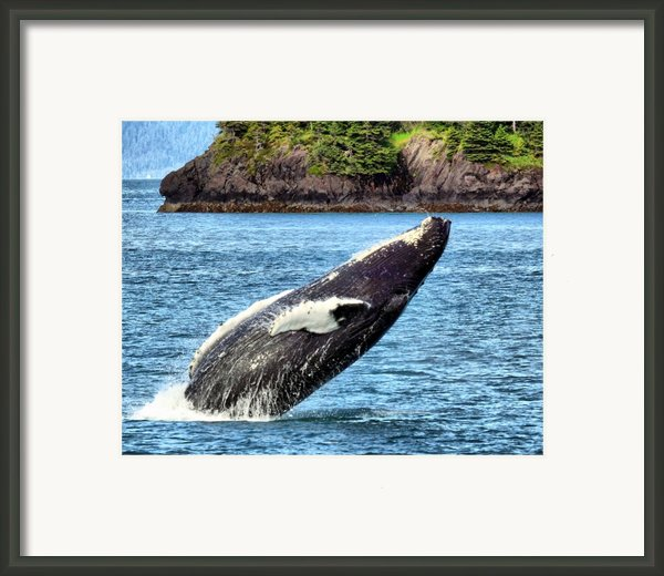 Joy Framed Print By David Wagner