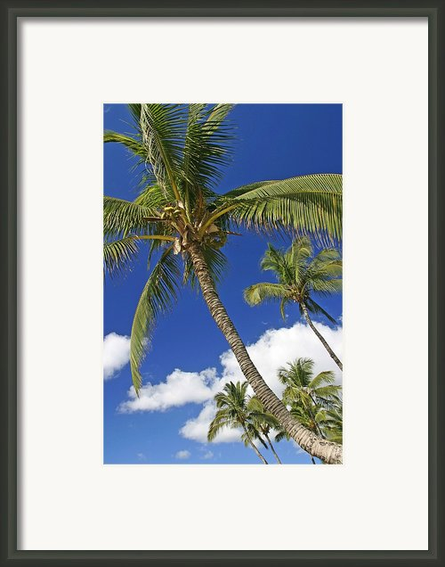 Kamaole Beach Framed Print By Ron Dahlquist - Printscapes