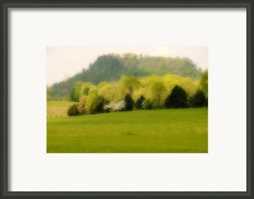 Kentucky Springtime Framed Print By Lyle  Huisken
