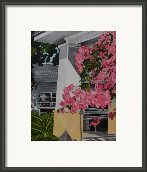 Key West Bougainvillea Framed Print By John Schuller