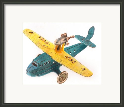 Kilgore Sea Gull Airplane Framed Print By Glenda Zuckerman