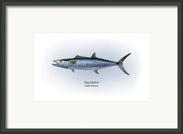 King Mackerel Framed Print By Ralph Martens