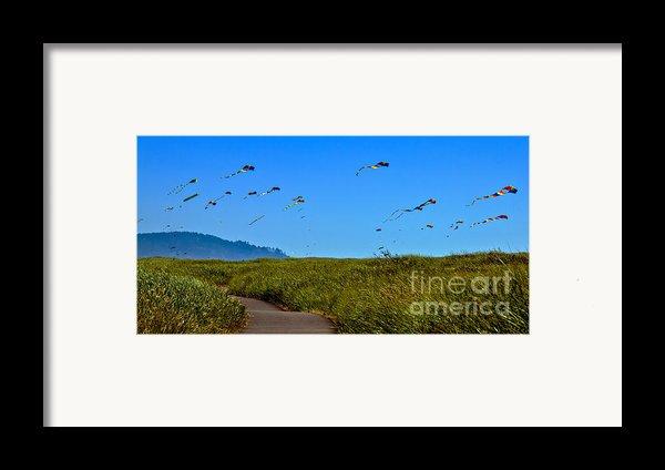 Kites Framed Print By Robert Bales