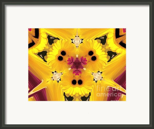 Kitty Petals Framed Print By Cheryl Young
