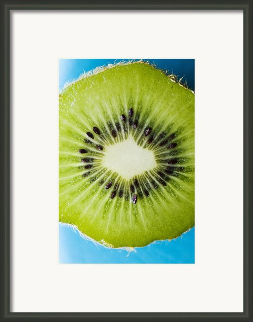 Kiwi Cut Framed Print By Ray Laskowitz - Printscapes