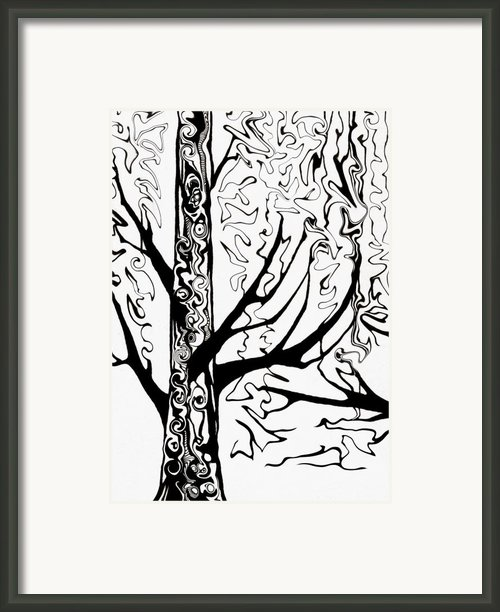 Knots Framed Print By Jeff Dottavio