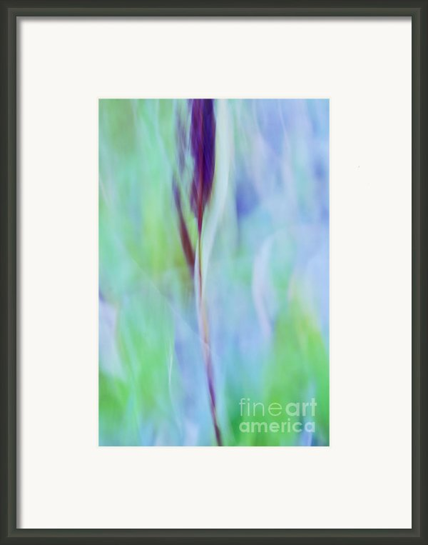 L Epi Framed Print By Variance Collections