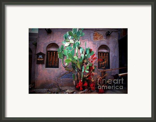 La Hacienda In Old Tuscon Az Framed Print By Susanne Van Hulst