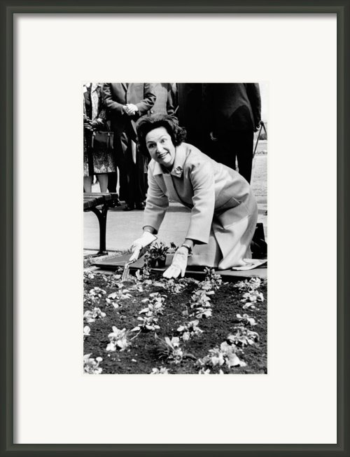 Lady Bird Johnson Planting Pansies Framed Print By Everett
