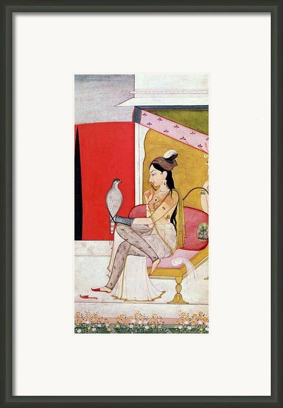 Lady With A Hawk Framed Print By Guler School