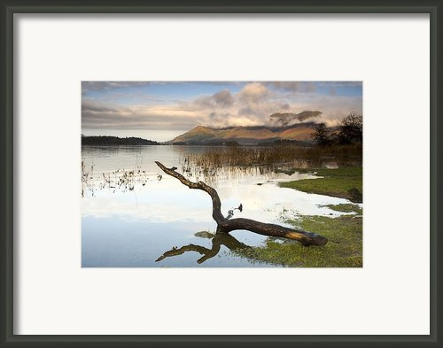 Lake Derwent, Cumbria, England Framed Print By John Short