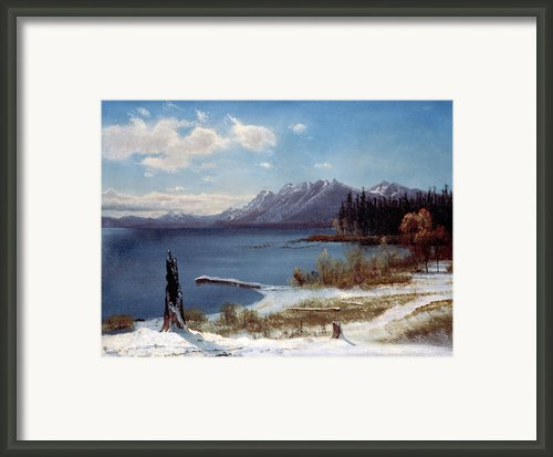 Lake Tahoe Framed Print By Albert Bierstadt