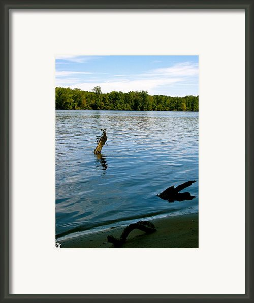 Lakeview   Framed Print By Debra     Vatalaro