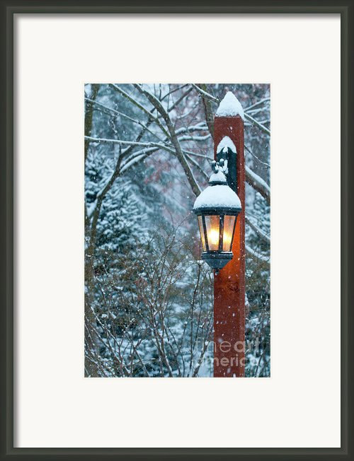 Late Afternoon Snow Framed Print By Sandra Bronstein