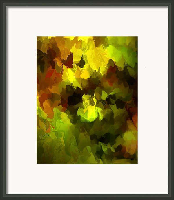 Late Summer Nature Abstract Framed Print By David Lane