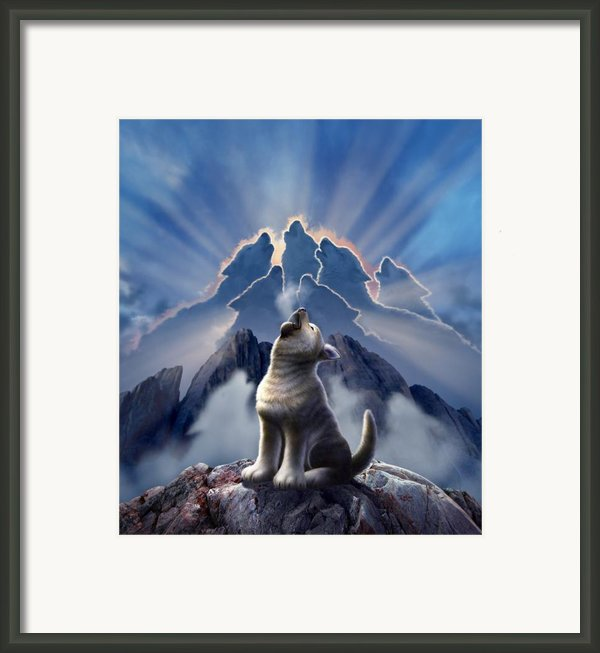 Leader Of The Pack Framed Print By Jerry Lofaro