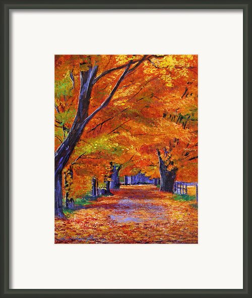 Leafy Lane Framed Print By David Lloyd Glover