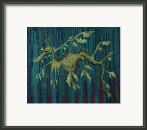 Leafy Sea Dragon Framed Print By Kelly Jade King