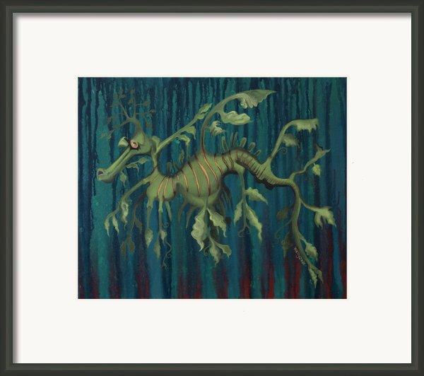 Leafy Sea Dragon Framed Print By Kelly Jade King