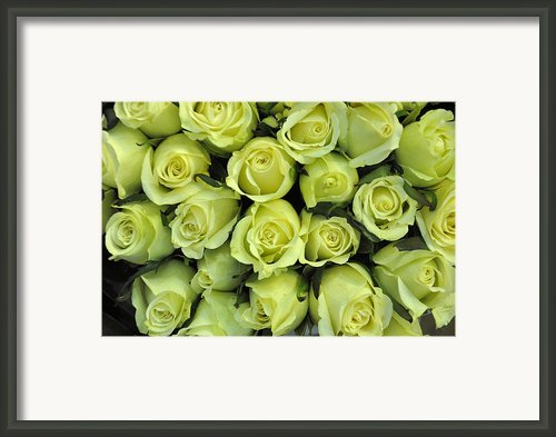 Lemon Limes Framed Print By Jan Amiss Photography