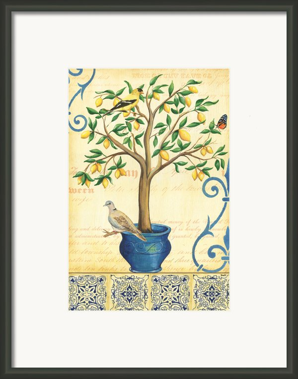 Lemon Tree Of Life Framed Print By Debbie Dewitt