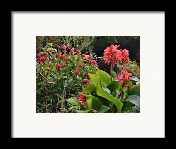 Les Fleurs De Honfleur Framed Print By Joe Bonita