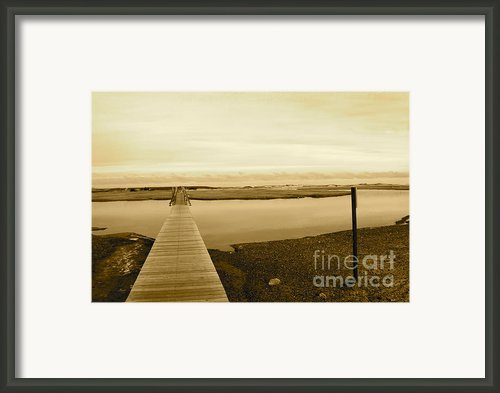 Lets Take A Walk Framed Print By Eric Chapman