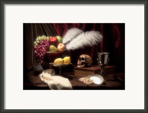Life And Death In Still Life Framed Print By Tom Mc Nemar