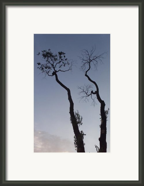 Life And Death Framed Print By Scott Sawyer