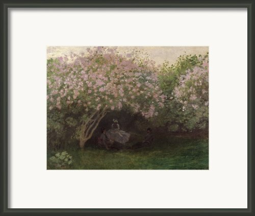 Lilacs Framed Print By Claude Monet