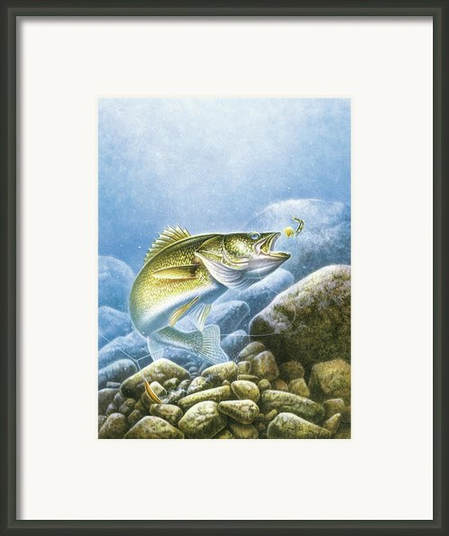 Lindy Walleye Framed Print By Jq Licensing
