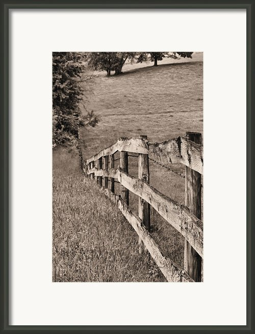 Lines Bw Framed Print By Jc Findley
