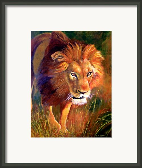 Lion At Sunset Framed Print By Michael Durst