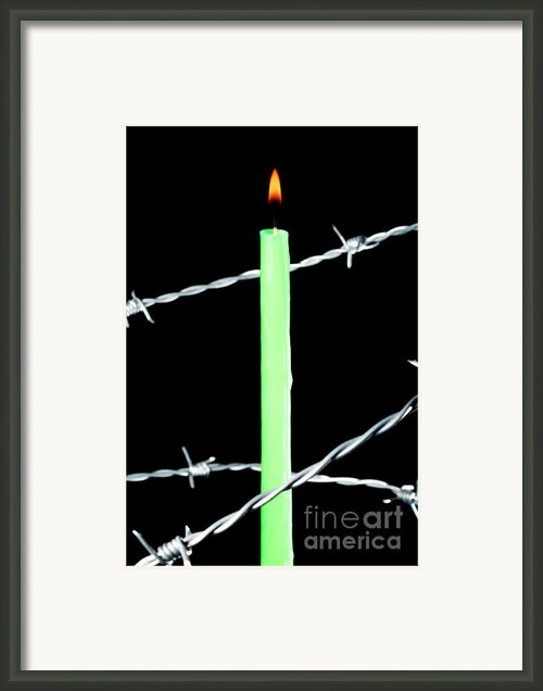 Lit Candle Surrounded By Barbed Wire Framed Print By Sami Sarkis