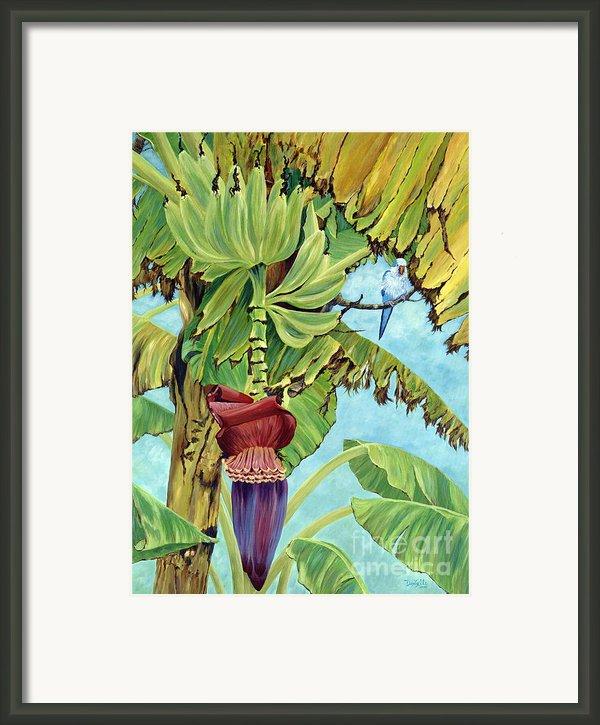 Little Blue Quaker Framed Print By Danielle  Perry