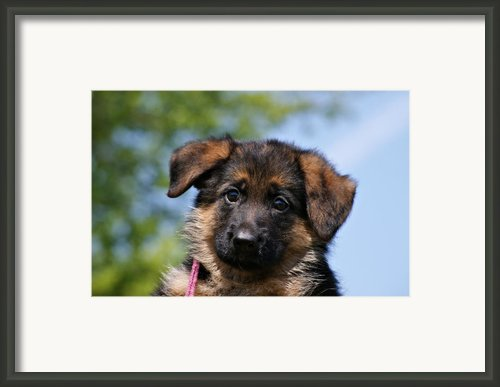 Little Darling Framed Print By Sandy Keeton