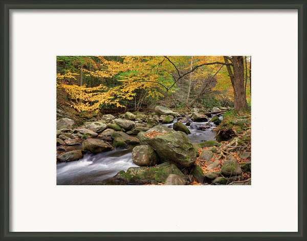 Little River I Framed Print By Charles Warren