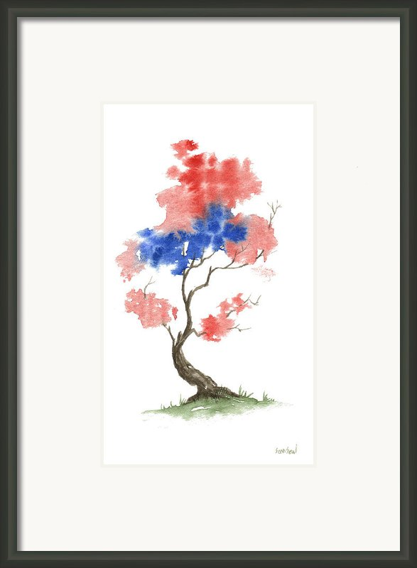 Little Zen Tree 291 Framed Print By Sean Seal