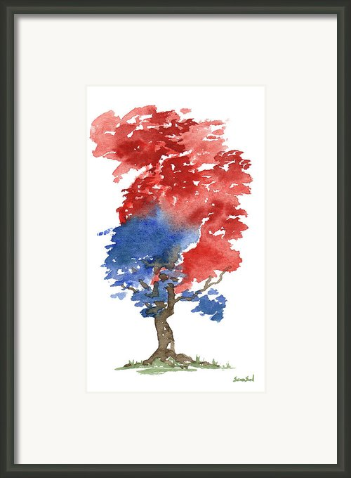 Little Zen Tree 292 Framed Print By Sean Seal