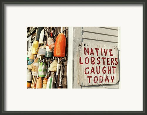 Lobster Shack. Framed Print By John Greim