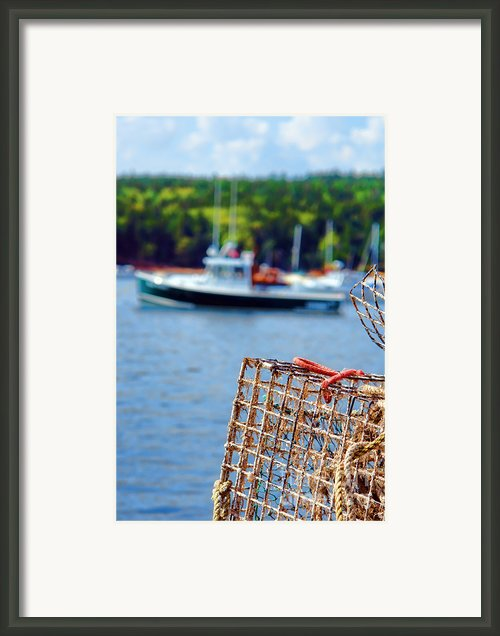 Lobster Trap In Maine Framed Print By Olivier Le Queinec