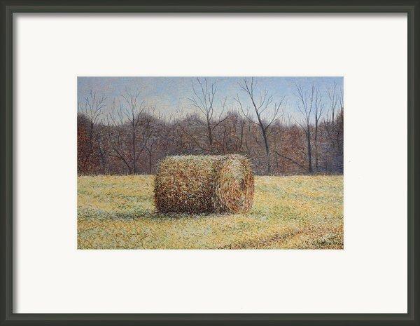 Lone Haybale Framed Print By Patsy Sharpe