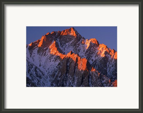 Lone Pine Peak Framed Print By Inge Johnsson