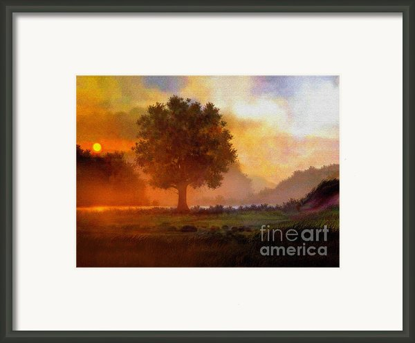 Lone Tree Framed Print By Robert Foster