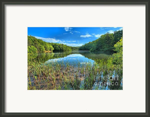 Long Branch Marsh Framed Print By Adam Jewell